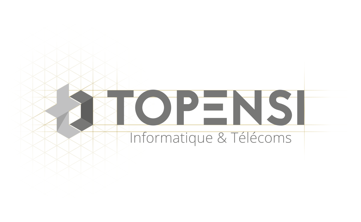 Grille de construction du Logo Topensi